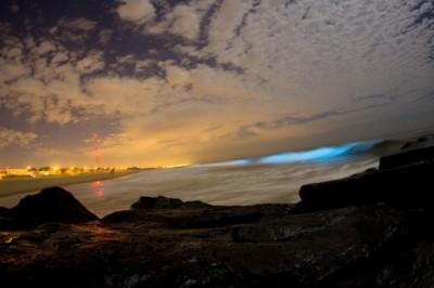Glow in the dark waves on the San Diego shoreline